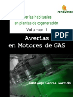 Averias en Motores de Gas Vol1