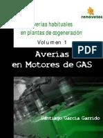 Averias en Motores de Gas Vol1