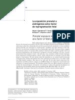 Esxposicion Prenatal a Androgenos