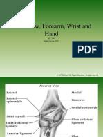 Elbow Wrist Hand09