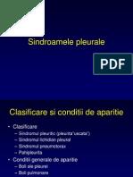 Sindroamele pleurale Semiologie