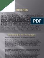 Micosis Pro
