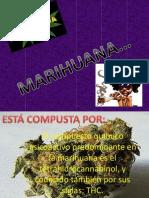 Marihuana a a a a a a a a a A