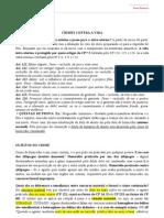 Penal Especial - Completo