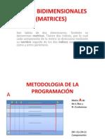 8va.-tablas Bi Dimension Ales (Matrices)[1]