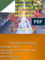 Modulo i Tomates Nutricion