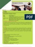 Indexing Books- Principles & Practice 2011