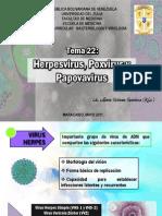 TEMA 22 Herpesvirus