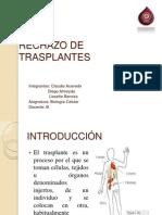 RECHAZO DE TRASPLANTES