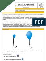 Practica de laboratorio_Experimento de Respiración %O2