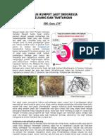 Status Rumput Laut Indonesia, Peluang Dan Tantangan 2