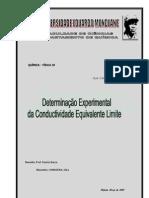Silva Condoeira - CONDUCTIVIDADE I _Acidos Fortes
