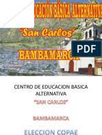 Copae San Carlos 2010