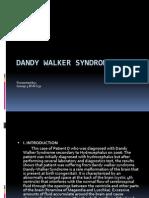 dandy walker presentation