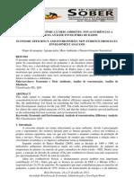 Eficiencia econômica e meio ambiente - Thiago Soares