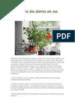 Importância das plantas em sua casa