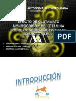 presentacion_Glutamato