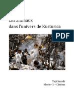 Dossier Kustu