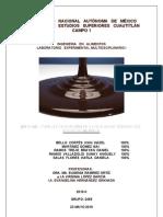 Informe Final (Todo)Lem i