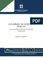 Gerencia Publica Para La Alta Direccion.puerto Montt