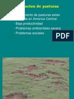 DEGRADACION DE PASTURA