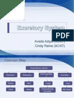 Excretion System