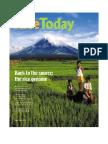 Rice Today (Volume 1, no. 2)