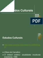 estudos-culturais1