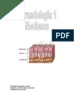 dermatologia nociones