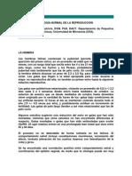 ANATOMÍA Y FISIOLOGÍA NORMAL DE LA REPRODUCCIÓN