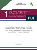 recuperacion_de_pastos_alpinos_en_el_valle_de_ishinca