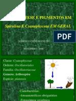 Fotossintese Em Cianobacterias