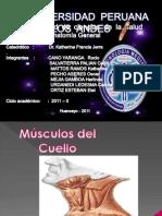 Msculos Del Cuello[1]