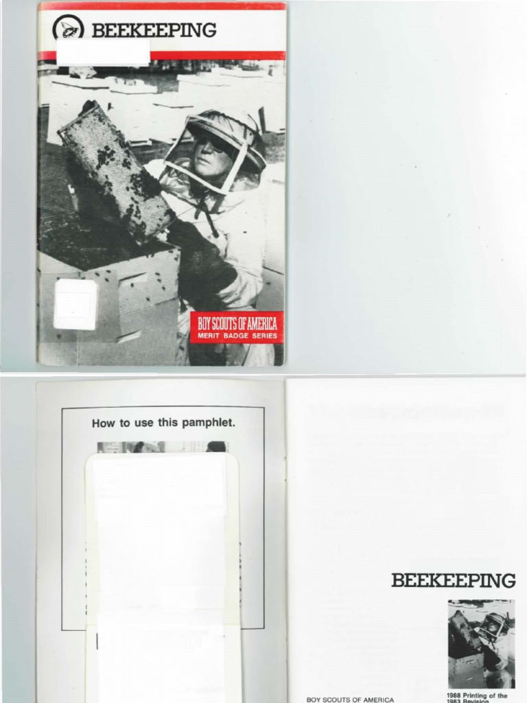 Boy scout beekeeping merit badge pamphlet beekeeping beehive robcynllc Image collections