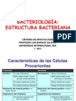 Estructura Bacteriana (3)