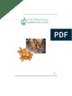 Gvb Strategic Marketing Plan