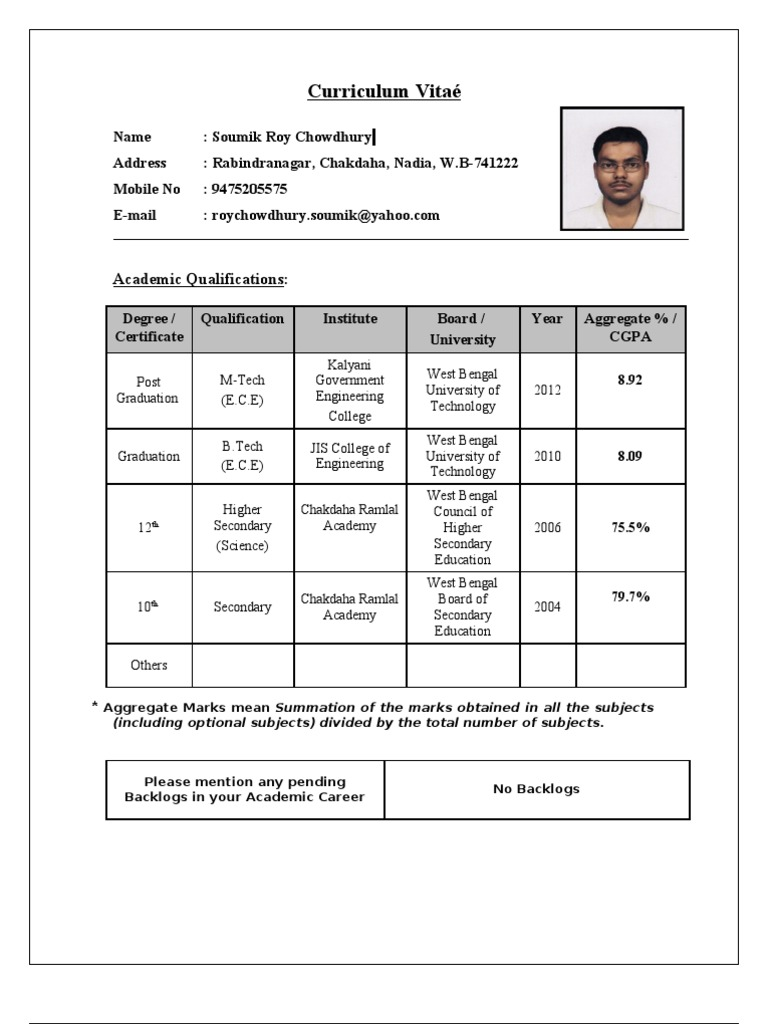 Resume Format With Picture