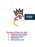 Business Plan Hachery