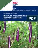 Manual de Produccion de Berenjena Final