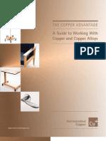 Copper Standard Guide
