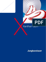 Xanthan Gum 2006