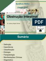 Obstrução Intestinal