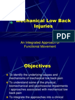 Mechanical Low Back Injuries[1]