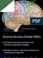 3 2 Sistema Nervioso Central  C3 2