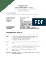 Curriculum Vitae Cristian Fredes
