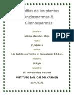 gimniospermas y angiospermas