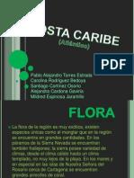 REGIÓN DE LA COSTA CARIBE