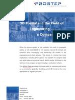 3D Formats White Paper
