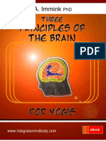 Three Principles of the Brain for Yogis