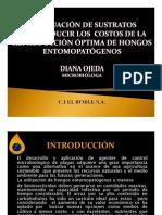 Evaluación de Sustratos Para La Disminución de Costos en Reproducción de Hongos [Modo de Compatib